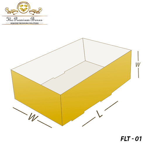 Custom-Foot-Lock-Tray